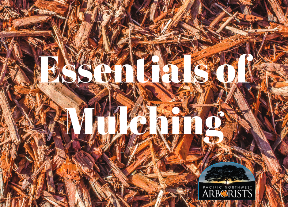 Mulch Essentials