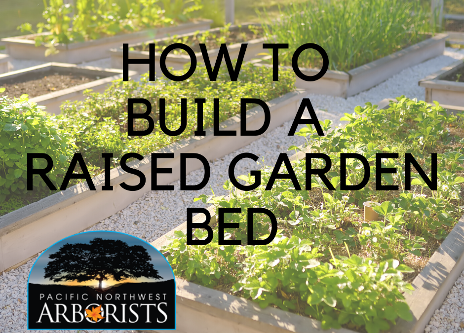 How To Build A Raised Garden